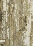 Index Driftwood Satinwood Wallpaper 1987/166 By Prestigious Wallcoverings